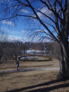 Hillside Gardens in High Park